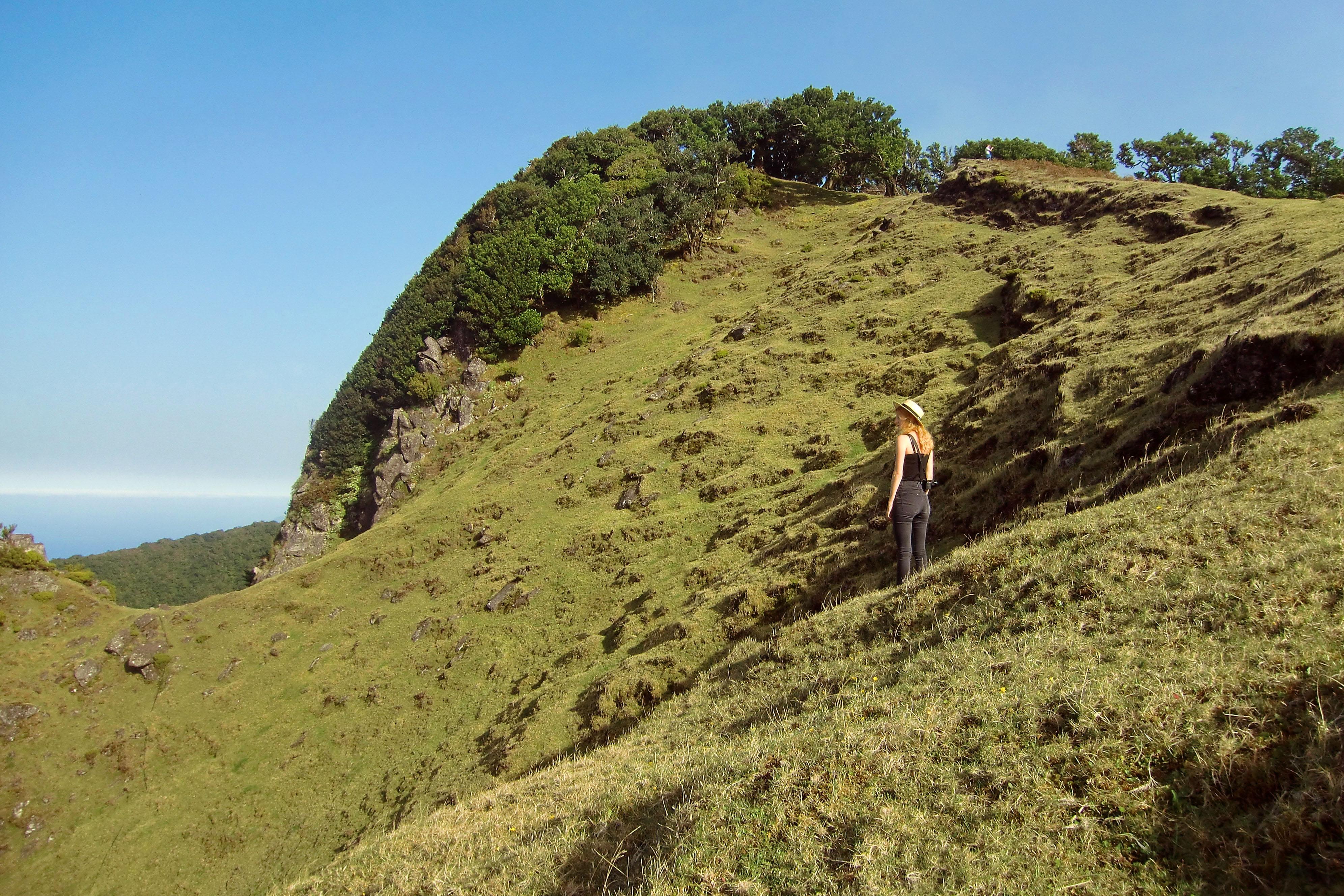 Madeira landscape vegan